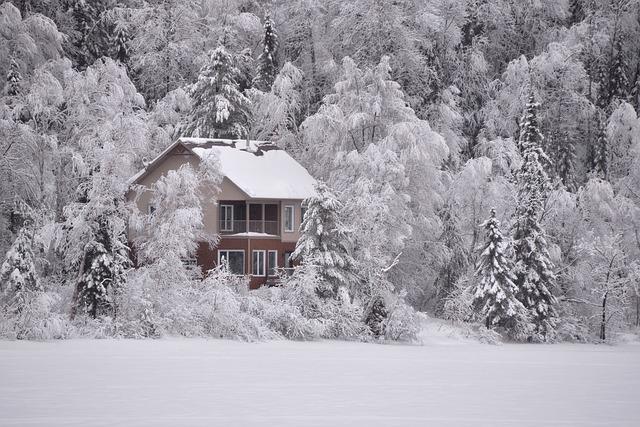 zasněžený dům v lese